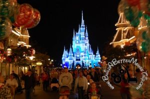 Cinderella's Castle with Christmas Lights at the Magic Kingdom in Disney World